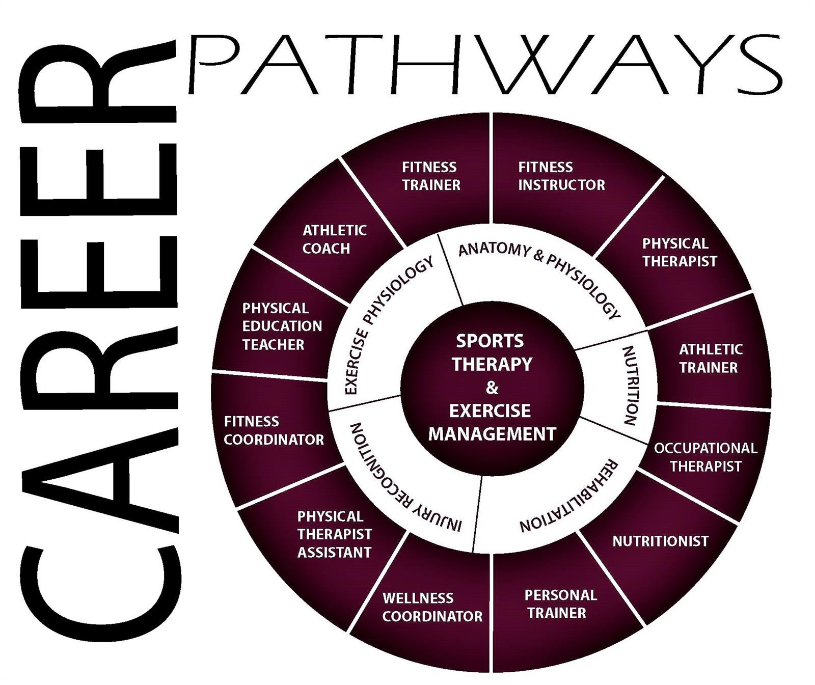Sports Career Wheel